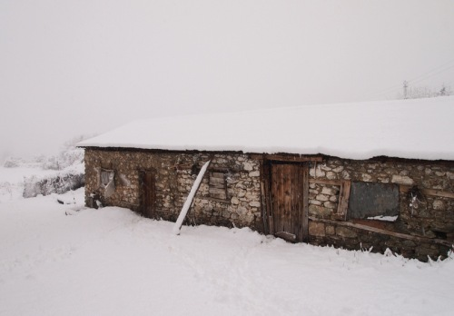 Stable in snow