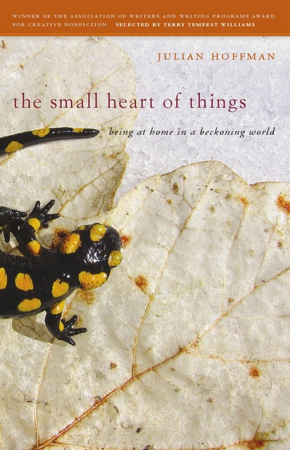 The Small Heart of Things Book  Cover