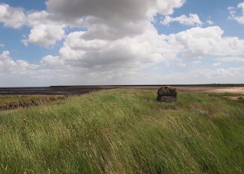 Grassland stone