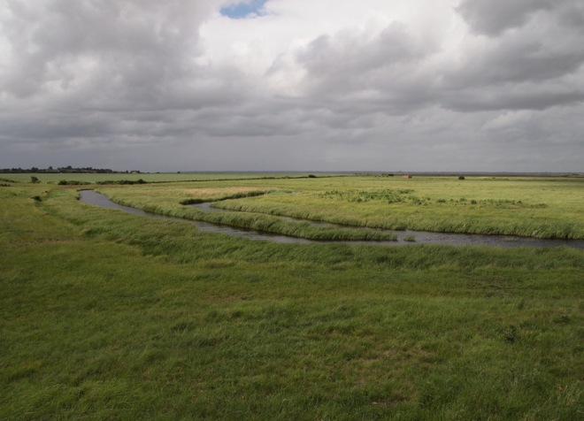 The Marsh Country