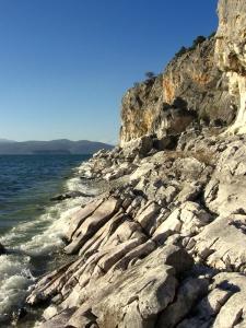 The Stone Coast