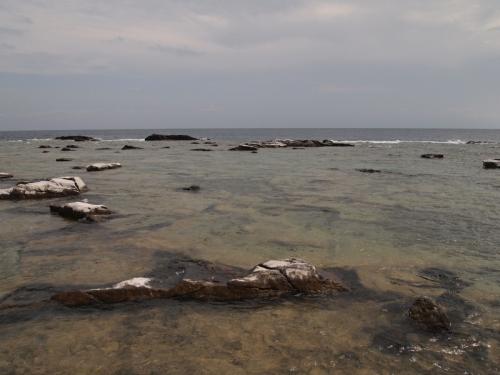 The shore