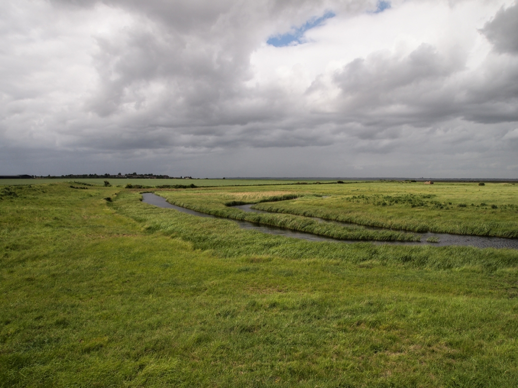 Allhallows Marshes 2