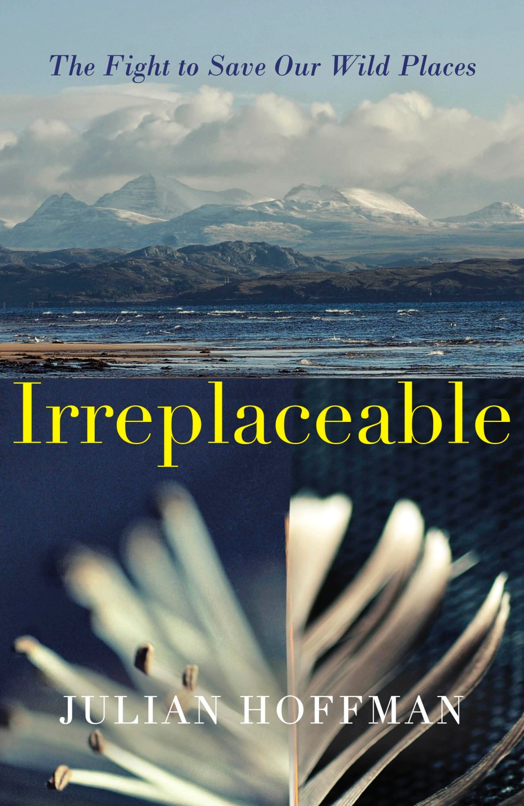 irreplaceable cover